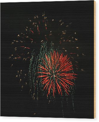 4th Of July 5 Wood Print by Marilyn Hunt