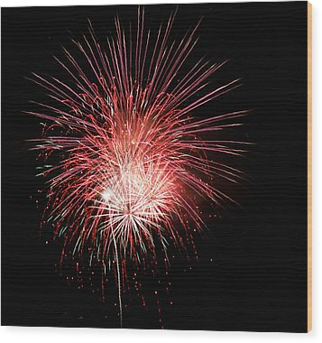 4th Of July 8 Wood Print by Marilyn Hunt