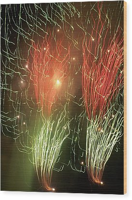 4th Of July Wood Print by Tammy McDougall