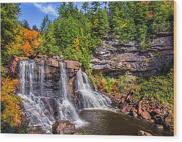 Blackwater Falls Wood Print by Mary Almond