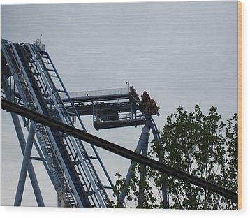 Busch Gardens - 12121 Wood Print by DC Photographer