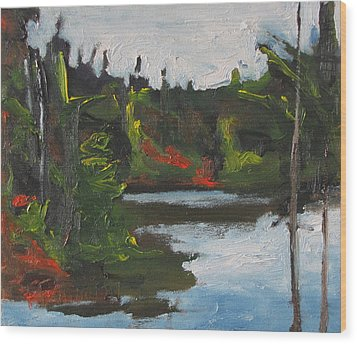 By The Pond Wood Print by Francois Fournier