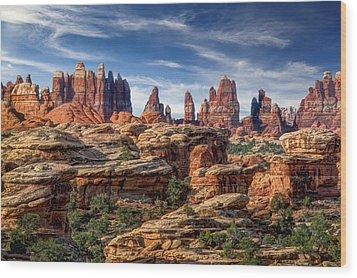 Canyonlands National Park Utah Wood Print by Utah Images