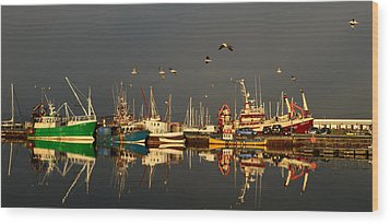Dingle Harbor Wood Print