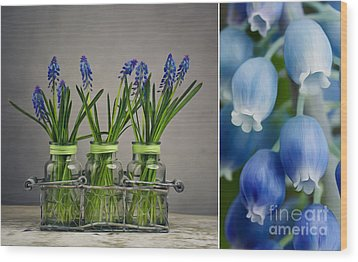 Hyacinth Still Life Wood Print by Nailia Schwarz