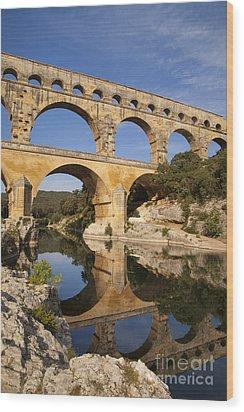 Pont Du Gard Wood Print by Brian Jannsen