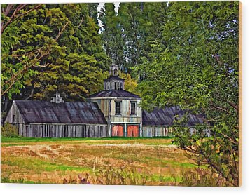 5 Star Barn Paint Filter Wood Print by Steve Harrington