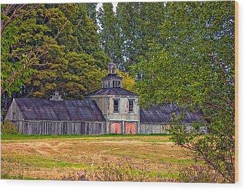 5 Star Barn Wood Print by Steve Harrington