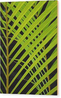 503 Wood Print