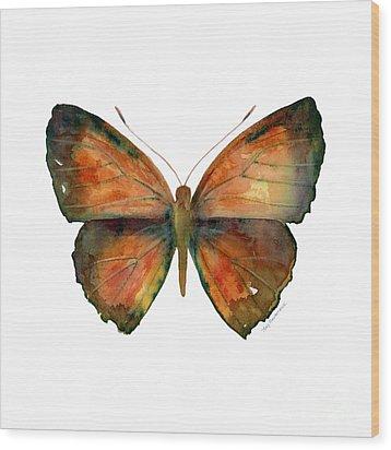 56 Copper Jewel Butterfly Wood Print by Amy Kirkpatrick