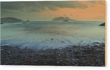 Blasket Islands Wood Print by Barbara Walsh