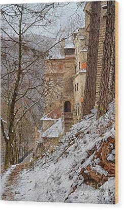 Bran Castle Wood Print by Gabriela Insuratelu