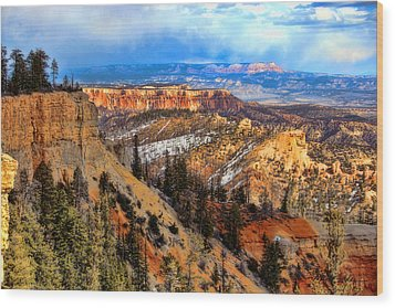 Bryce Canyon  Wood Print by Marti Green