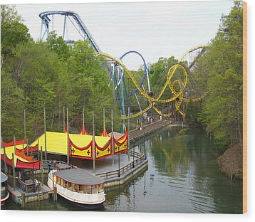 Busch Gardens - 12122 Wood Print by DC Photographer