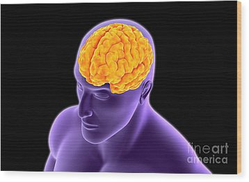 Conceptual Image Of Human Brain Wood Print by Stocktrek Images