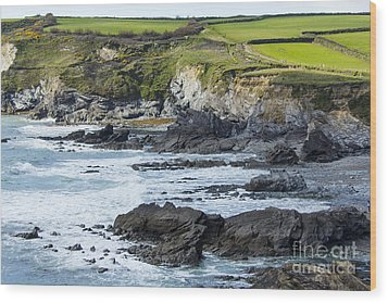 Cornish Seascape Gunwalloe Wood Print by Brian Roscorla