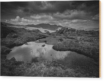 Langdale Wood Print