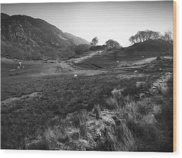 Wood Print featuring the photograph Snowdonia National Park Wales by Richard Wiggins