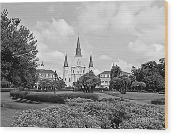 St. Louis Cathedral Wood Print by Scott Pellegrin