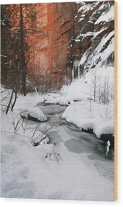16x20 Canvas - West Fork Snow Wood Print by Tam Ryan