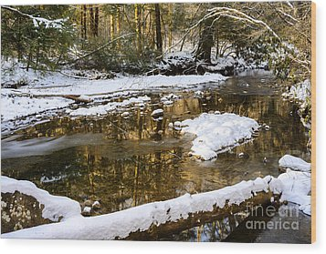 Winter Along Cranberry River Wood Print by Thomas R Fletcher