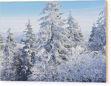 Winter Along The Highland Scenic Highway Wood Print by Thomas R Fletcher