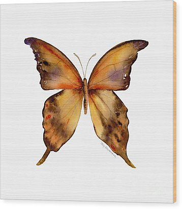 7 Yellow Gorgon Butterfly Wood Print by Amy Kirkpatrick