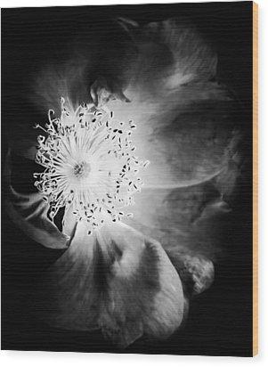 7440-22-4 Wood Print by Matti Ollikainen