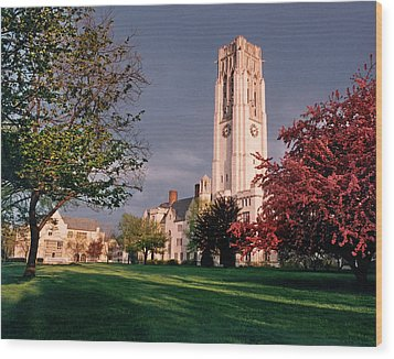 7535 University Of Toledo Bell Tower Wood Print