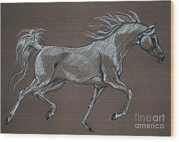 Arabian Horse  Wood Print by Angel  Tarantella