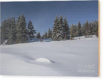 Beautiful Winter Landscape Wood Print by IB Photo