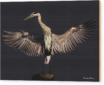 Great Blue Heron Wood Print by Paulette Thomas