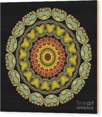 Kaleidoscope Ernst Haeckl Sea Life Series Wood Print by Amy Cicconi