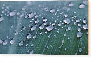 Raindrops Wood Print