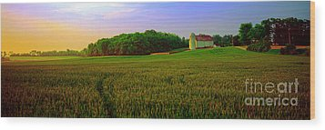 Wood Print featuring the photograph  Conley Rd Spring Pasture Oaks And Barn  by Tom Jelen