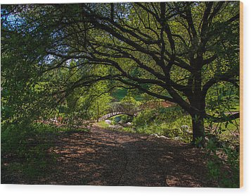 Duke Gardens Wood Print by Gene Hilton