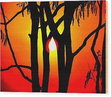 Nature Wood Print by Viren Rana