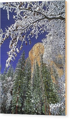 Usa, California, Yosemite National Park Wood Print by Jaynes Gallery
