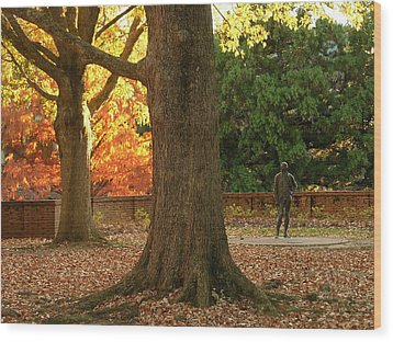 William And Mary College Wood Print by Jacqueline M Lewis