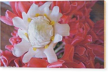 Flower For You  Wood Print by Gornganogphatchara Kalapun
