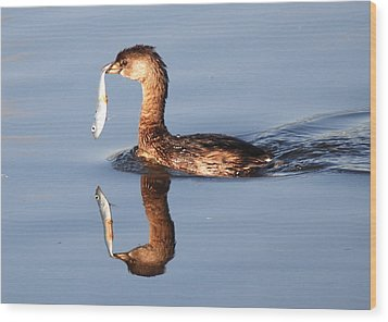A Bad Reflection Wood Print by Kathy Gibbons