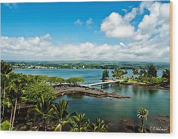 A Beautiful Day Over Hilo Bay Wood Print by Christopher Holmes