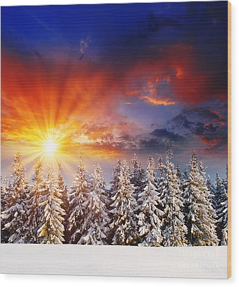 A Beautiful Sunset In The Winter Wood Print by Boon Mee