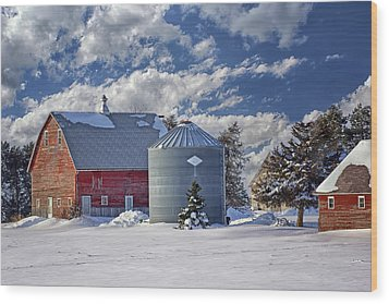 A Beautiful Winter Day Wood Print by Nikolyn McDonald