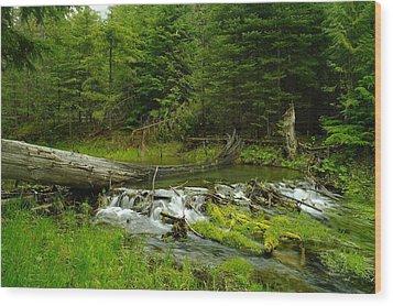 A Beaver Dam Overflowing Wood Print by Jeff Swan