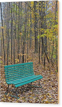 A Bench Nowhere... Wood Print