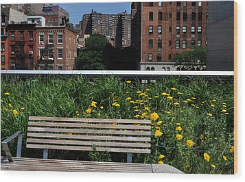A Bench On The High Line In New York City Wood Print by Diane Lent