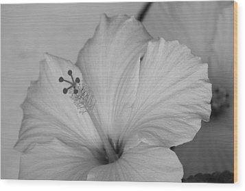 A Blending Flower Wood Print by Shweta Singh
