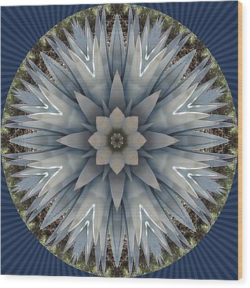A Blue Agave Wood Print by Trina Stephenson