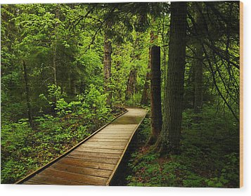 A Boardwalk To Paradise Wood Print by Jeff Swan